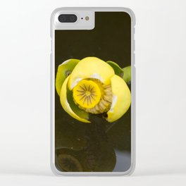 Everglades Flower Clear iPhone Case