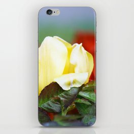 I embrace you tenderly iPhone Skin