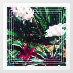 Geometric Flora  Art Print