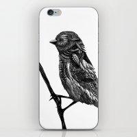 ornate iPhone & iPod Skins featuring Ornate Bird by ZantosDesign