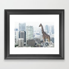 Giraffe in the City Framed Art Print