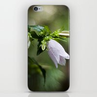 korean iPhone & iPod Skins featuring Korean Bellflower by Katie Kirkland