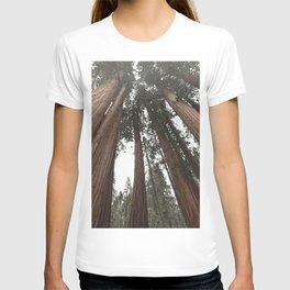 Sky Climbers - Sequoia T-shirt
