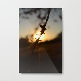 Barbed by Wire Metal Print