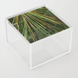 Multicolor Pine Needles Acrylic Box