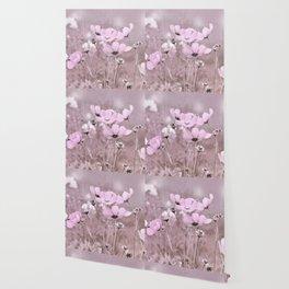 Cosmea 0152 Wallpaper