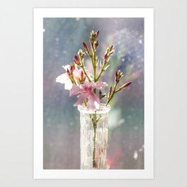 Nerium oleander 1 Art Print