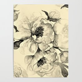 Peonies pale yellow and black art Poster