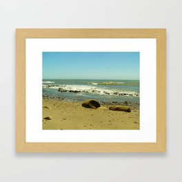 Bowling Ball Beach VII Framed Art Print