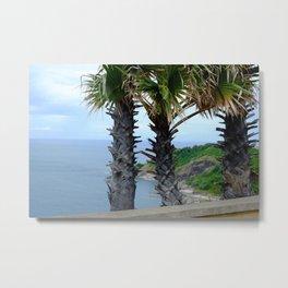 phuket tai palm Metal Print
