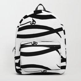The Beauty of Haa-2 Backpack