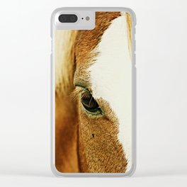 Fly In The Eye Clear iPhone Case