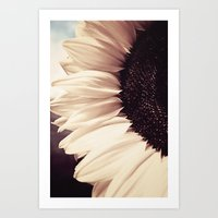 sunflower Art Prints featuring Sunflower by Anne Staub