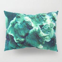 Watercolor Sealife, Scroll Coral 01, Bonaire, Dutch West Indies Pillow Sham