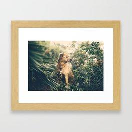 Lilah Framed Art Print