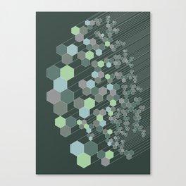 Hexagonal / cool Canvas Print