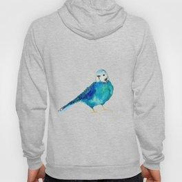 Blue budgie watercolor Hoody