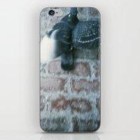 pigeon iPhone & iPod Skins featuring pigeon  by erinreidphoto