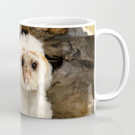 Cotton Owl Coffee Mug