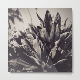 Ti Leaves Metal Print