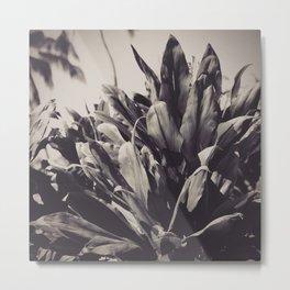 Ti Leaves Metal Print