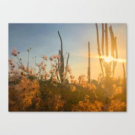 September in Taos Canvas Print