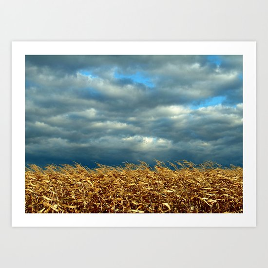 'CORN FIELD' Art Print