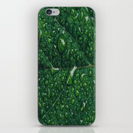 leaf dew drops iPhone Skin