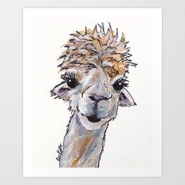 Alpaca Art, Angel the Alpa Art Print