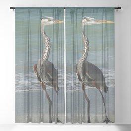 Beach Live Sheer Curtain
