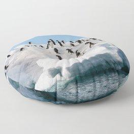 Gentoo Penguin playtime at your local iceberg Antarctica Floor Pillow