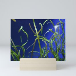 Find the Pipefish Mini Art Print