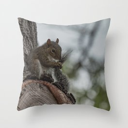 Squirrel Tail Throw Pillow