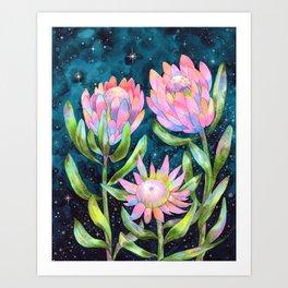 Sugarbush Night Garden Art Print