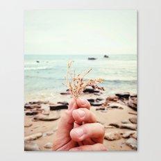 Ocean Stuff Canvas Print