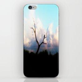 Vigilant iPhone Skin