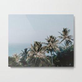 palm trees xv / phi phi islands, thailand Metal Print