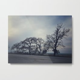 Road Between Forest and Sea Metal Print