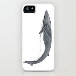 Fin whale iPhone Case