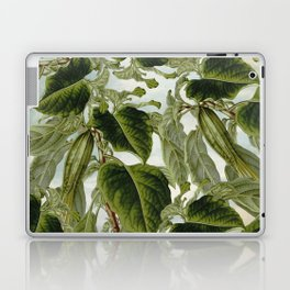 SPARYSIKA Laptop & iPad Skin