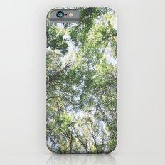 woodland 3428 Slim Case iPhone 6s