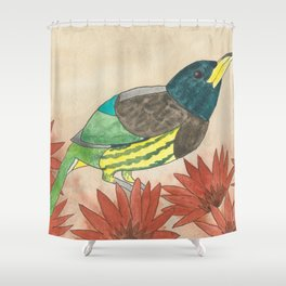 Great Barbet Watercolor Shower Curtain