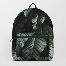 Growth II Backpack