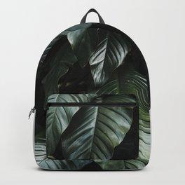 Growth II Backpack