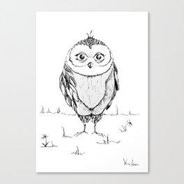Strict owl Canvas Print