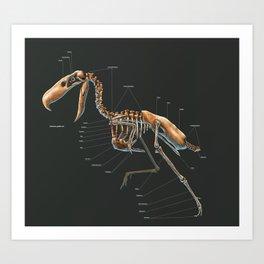 Kelenken Guillermoi Skeleton Study Art Print