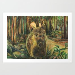 Wild pig in the wood Art Print