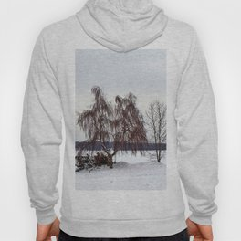 Weeping Willow on the Frozen Lake Hoody