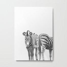 Zebra Duo - Wild Zebras Animal Travel photography by Ingrid Beddoes Metal Print