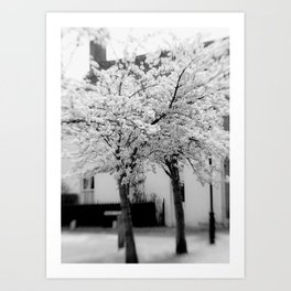 Village In Blossom Monochrome Art Print